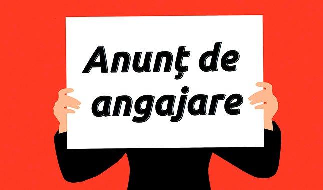 ANUNȚ! CONCURS